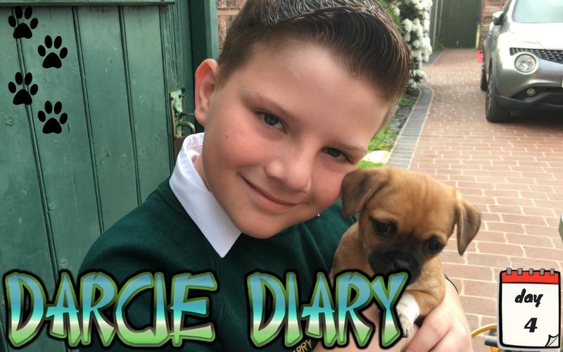 Darcie Diary – Day 4